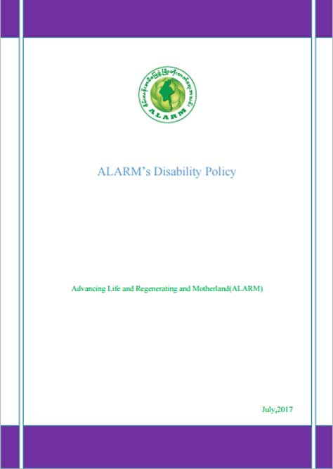 ALARM Disability Policy 2017