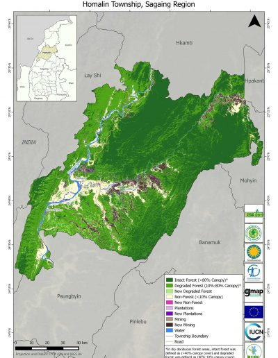 Homalin Forest Cover Change