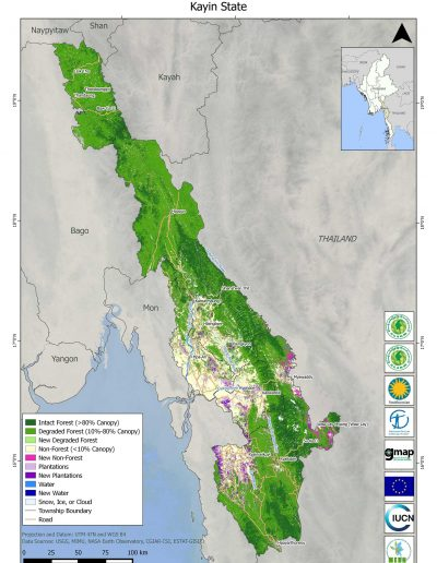 Kayin Forest Cover Change