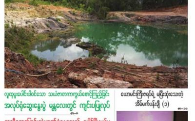 Myanmar Green Affairs (Volume 6, Issue 3)