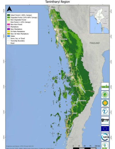 Tanintharyi Forest Cover Change