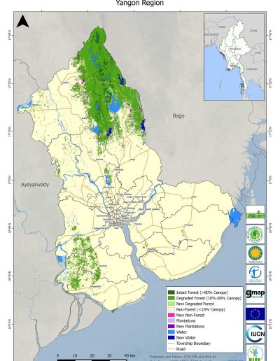 Yangon Forest Cover Change