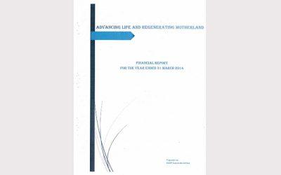 Audit Report (31 Mar 2014)