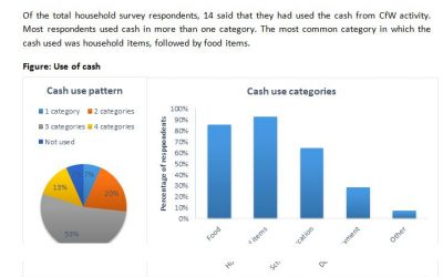 Post Distribution Monitoring ALARM's Early-Recovery_Cash for Work report
