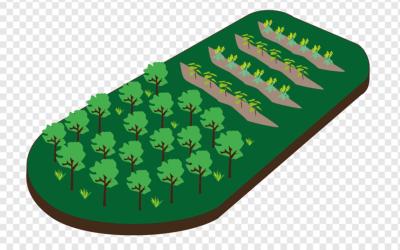Afforestation and Reforestation