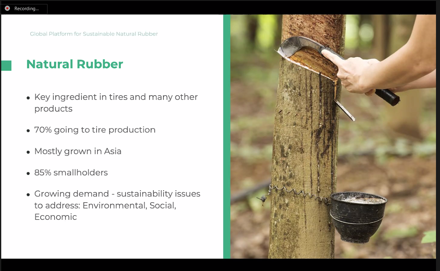 """ALARM's """"Sustainable Natural Rubber Initiative: Exploring a Gateway to Revitalizing Myanmar's Natural Rubber Industry"""" Online Workshop"""